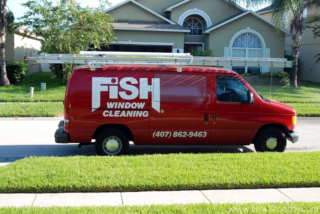 Sparkling clean windows thanks to fish window cleaning for Fish window cleaning
