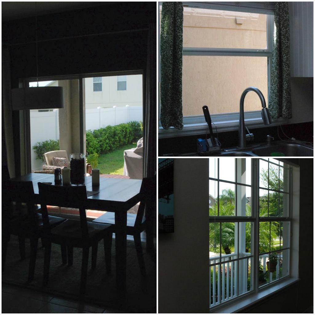 Sparkling Clean Windows thanks to FISH Window Cleaning!