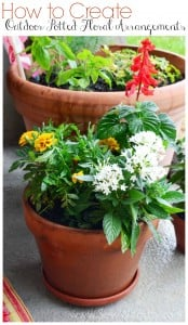 How to Create Outdoor Potted Floral Arrangements from SewWoodsy.com #gardening #diy