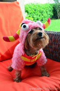 World's Cutest Dog -->> Martha Stewart Pet Monster Costume from SewWoodsy.com #Halloween #Pet #Dog #PetCostume #Costume