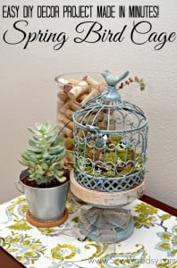 Spring Bird Cage + Pinterest Party