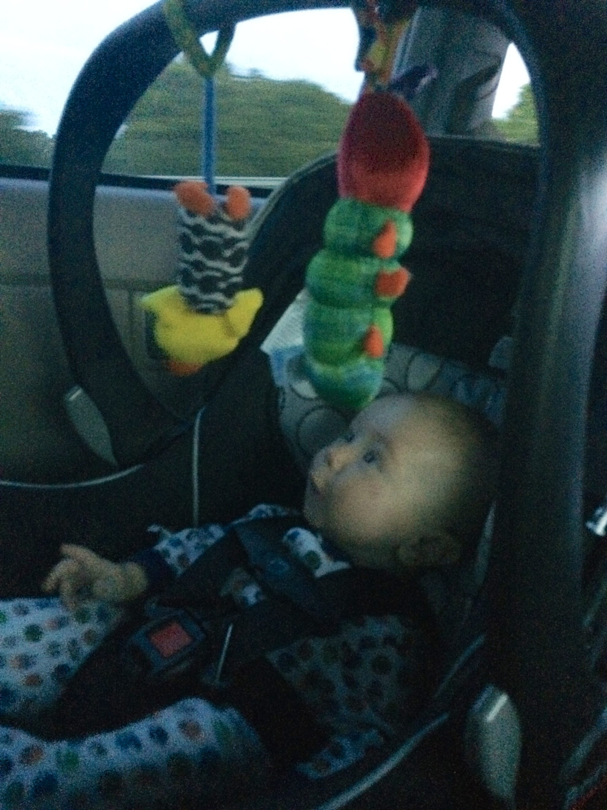 Ryder in Car