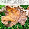 3 Ways to Help Reduce Fall Allergens #HealthierHome