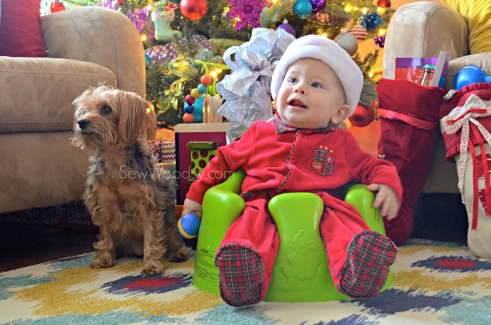 christmas baby and yorkie