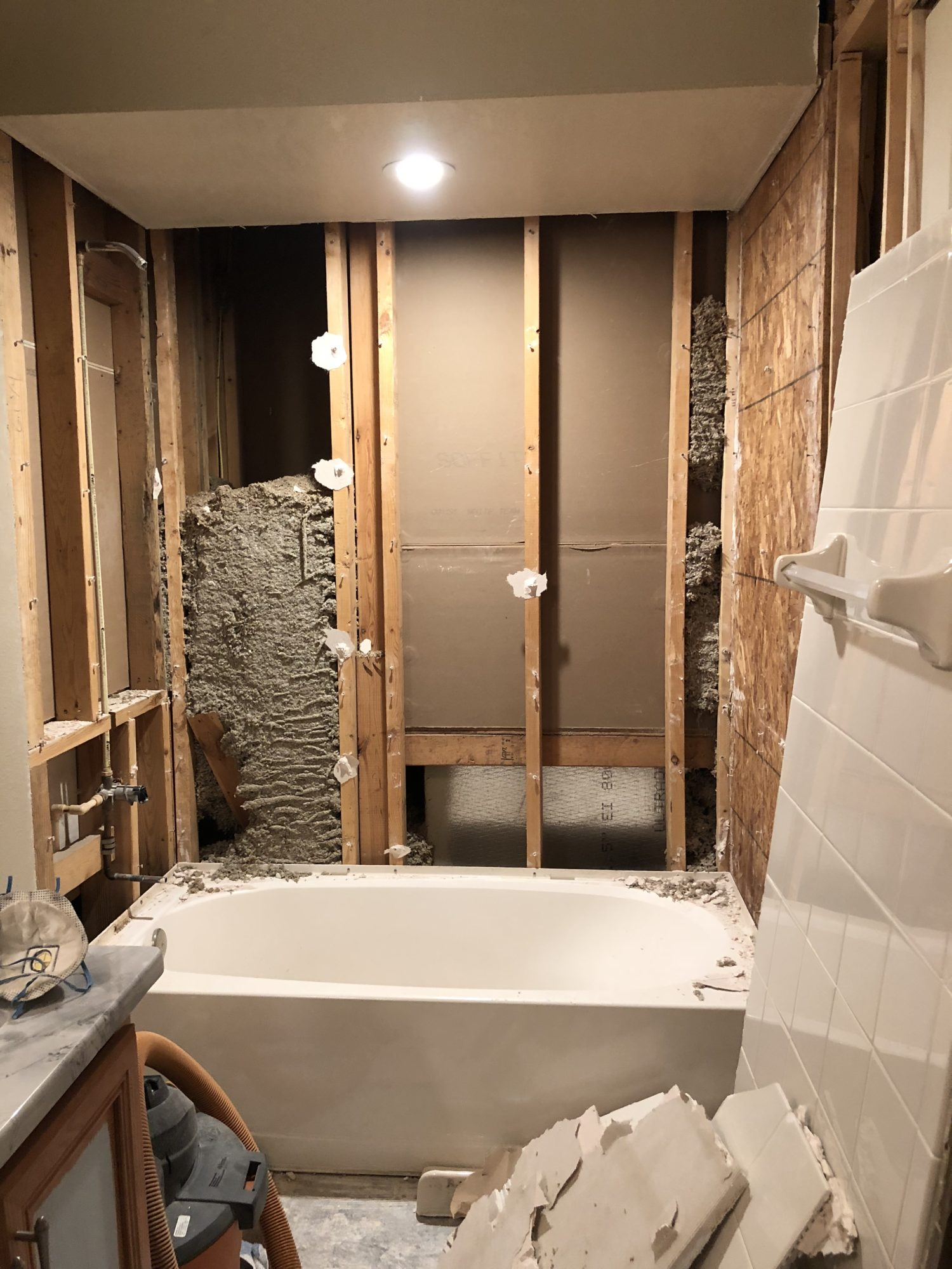 Bathroom Demo