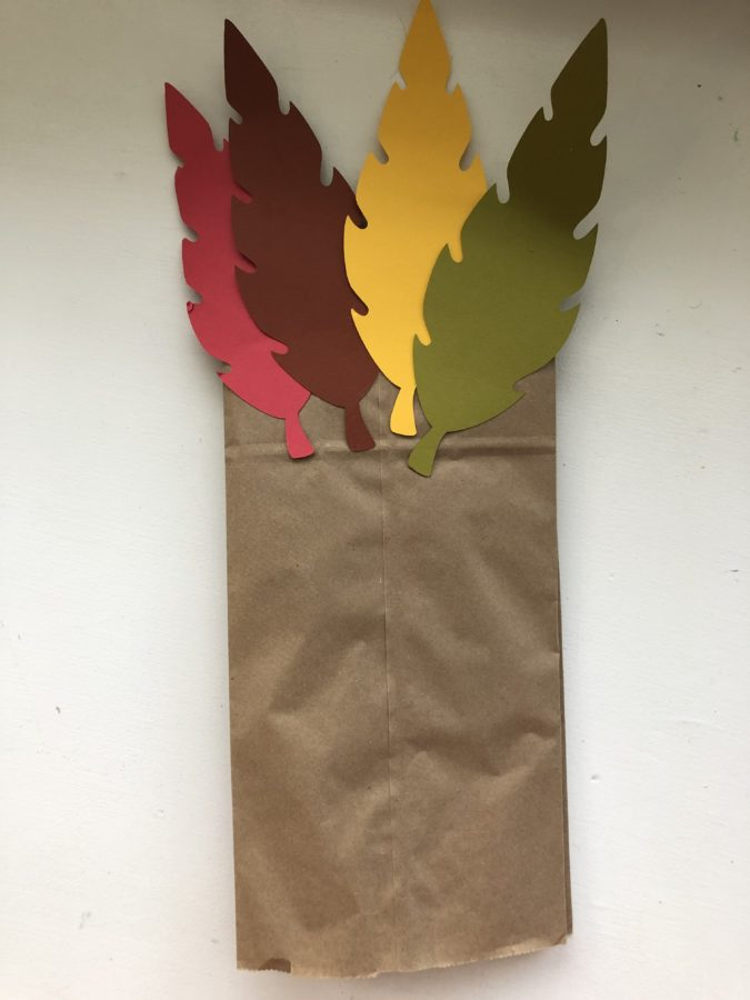 Turkey Paper Bag Puppets with feathers