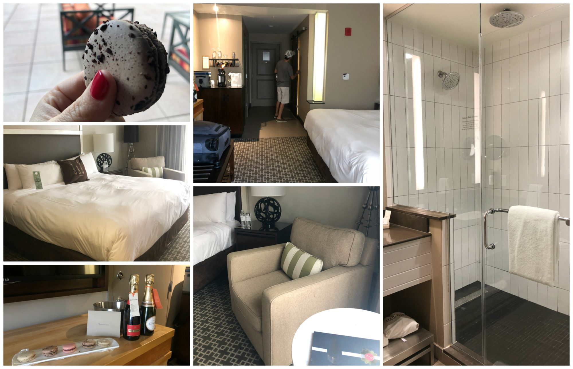 The Epicureran Hotel - Hotel Room